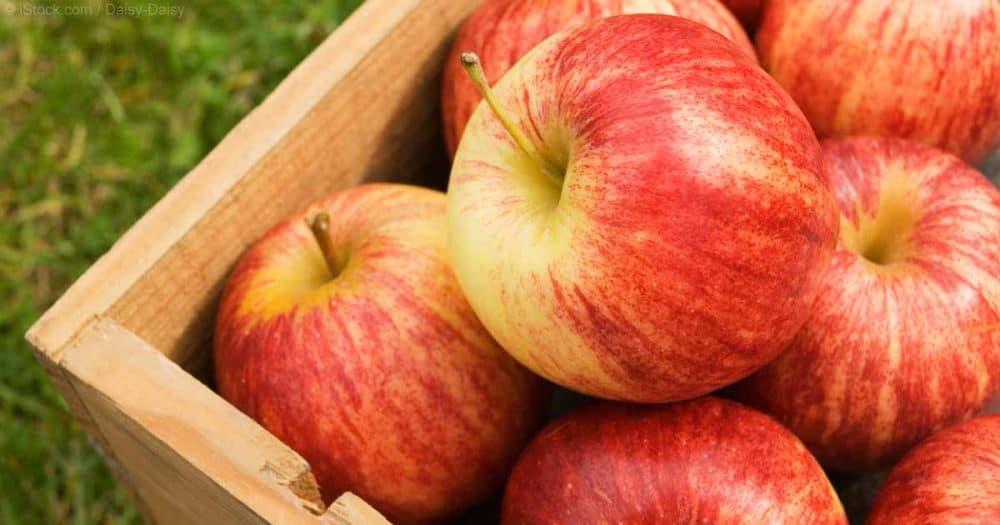 beneficios-salud-manzanas-fb